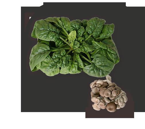 雫石長山の新鮮野菜